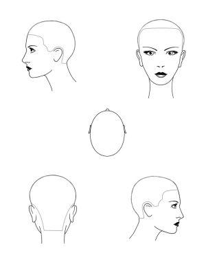 beauty school head sheet | Beauty School Drop Out