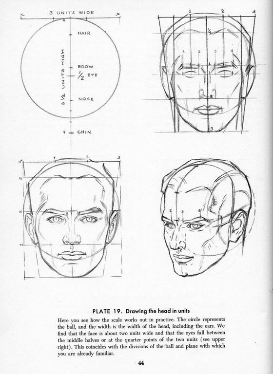 32 best images about Drawing the human head on Pinterest