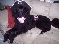 Easy to Make Pirate Dog Costume | The o'jays, Pirates and ...