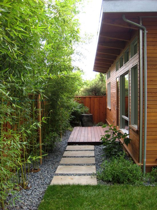 25 Best Bamboo Garden Ideas On Pinterest Bamboo Privacy Fence