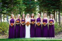 Fall wedding ideas for Lake Tahoe weddings. Purple ...