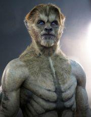 fantasy werewolf