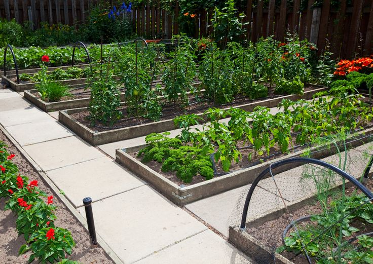 115 Best Images About Raised Garden Beds On Pinterest Gardens