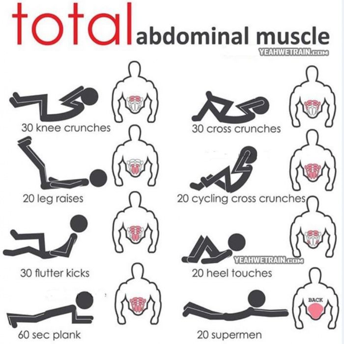 1000+ ideas about Abdominal Muscles on Pinterest