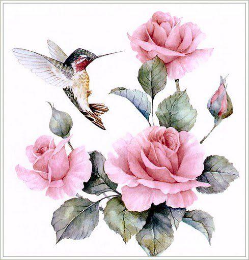 butterflys&birds