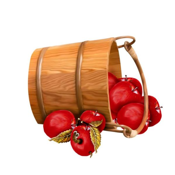 bucket with apples transparent