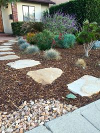 Best 25+ Low water landscaping ideas on Pinterest