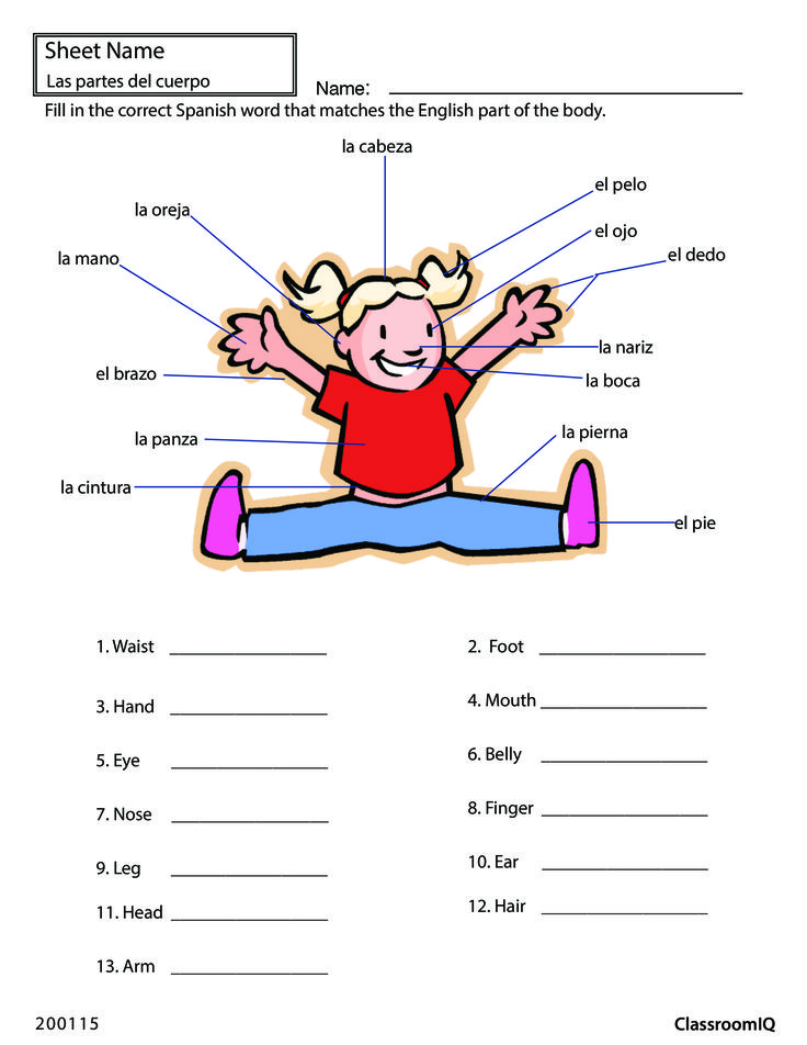 Body Parts In Spanish #spanishworksheets #classroomiq #newteachers  Spanish Worksheets  Level