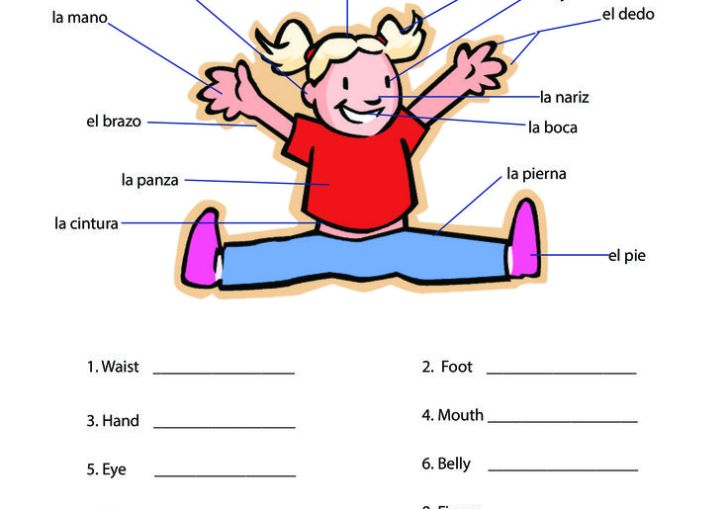 Ideas For Teaching Medical Terminology