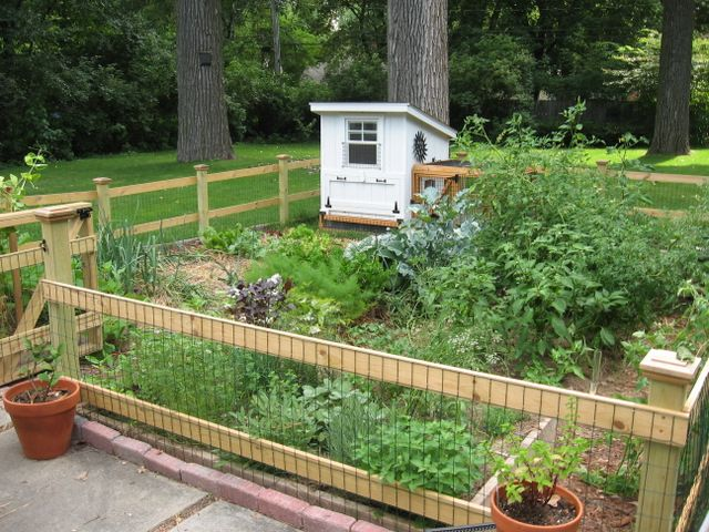 25 Best Ideas About Fence Garden On Pinterest Garden Fences