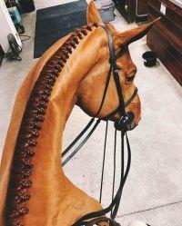 25+ best ideas about Horse Hair Braiding on Pinterest