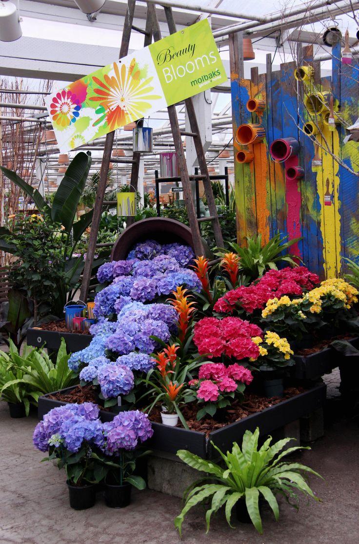 267 Best Images About Garden Center Display Ideas On Pinterest