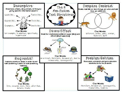 17 Best images about informational texts on Pinterest