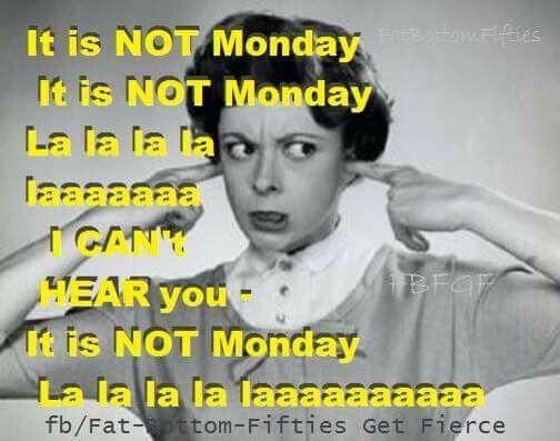 Best 25+ Happy Monday Funny Ideas On Pinterest