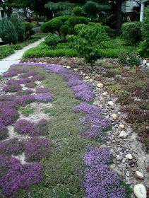 13 Best Images About Grass Free Front Yard On Pinterest Gardens