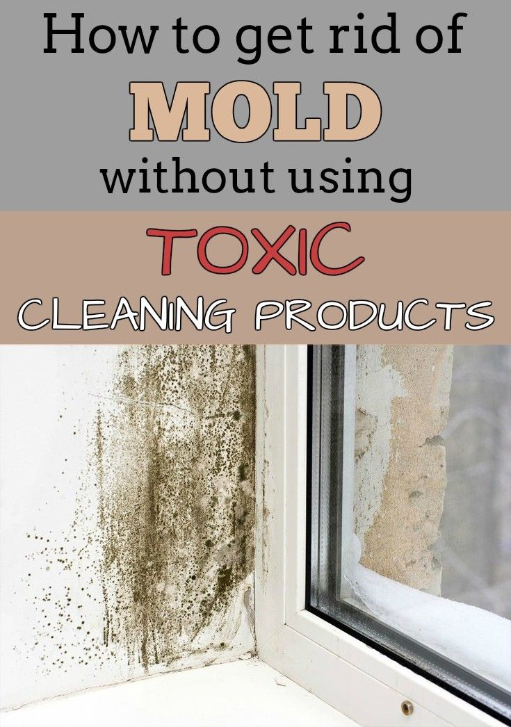 Get Rid Of Mold And  Get Rid Of Mold And Mildew With