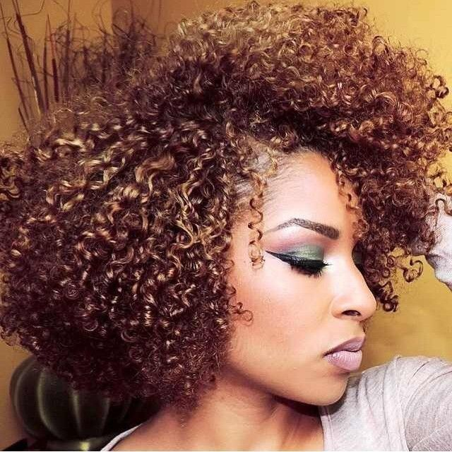 Best 25 Natural Hair Bob Ideas On Pinterest Black Hair Cuts