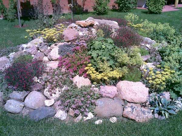 25 Best Ideas About Rock Garden Design On Pinterest Backyard