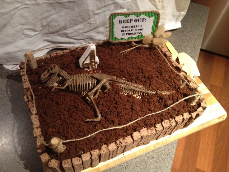 Dinosaur Dig Cake For 4 Year Old Dino Diva Cakes