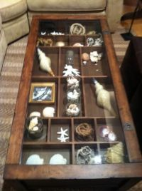 Display case, Coffee tables and Display on Pinterest