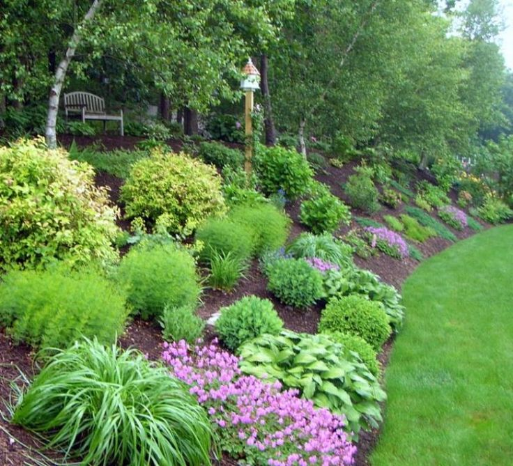 25 Best Ideas About Sloped Backyard On Pinterest Sloping