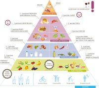 Oltre 1000 idee su Piramide Alimentare Per Bambini su ...