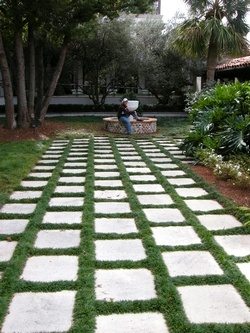 Mondo Grass Walkway Can Stay As Low As 3 Gardening Pinterest Patio Ideas Patio And