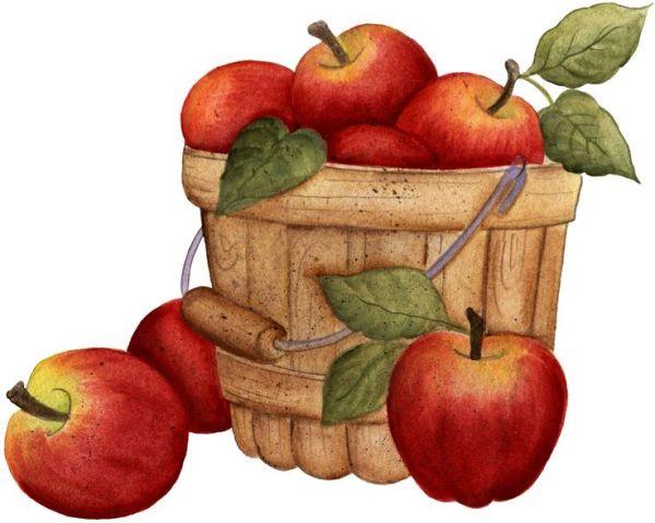 yahoo basket of apples