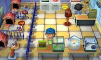 208 best images about ACNL on Pinterest