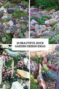 25+ best ideas about Succulent rock garden on Pinterest ...