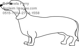 0515-1004-2704-1558_dachshund_coloring_page.jpg (300×176