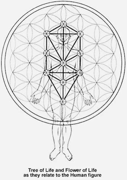 92 best Art, geometry, science & thoughts images on Pinterest