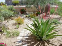 1000+ ideas about Zero Scape on Pinterest | Drought ...