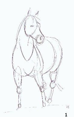 10 Best images about drawing horses 101: anatomy on