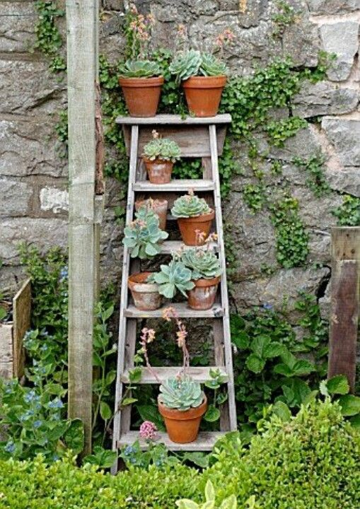 25 Best Ideas About Garden Ladder On Pinterest Vertical