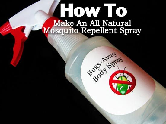 How To Build Insect Repellant