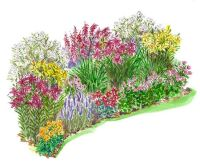 1000+ images about Garden Plans on Pinterest