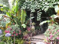 Alternative Eden Exotic Garden: Will Giles Exotic Garden ...