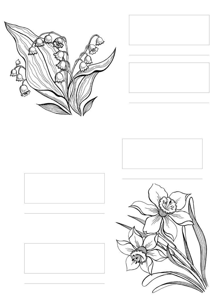 Spectrum Noir Blank Color Chart Printable Sketch Coloring Page