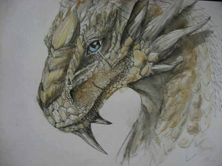 32 Best Images About Dragon Drawings On Pinterest Baby