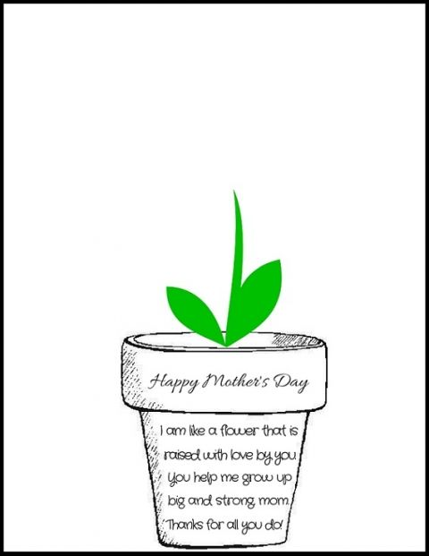 174 Best images about Mother's Day 1st grade on Pinterest