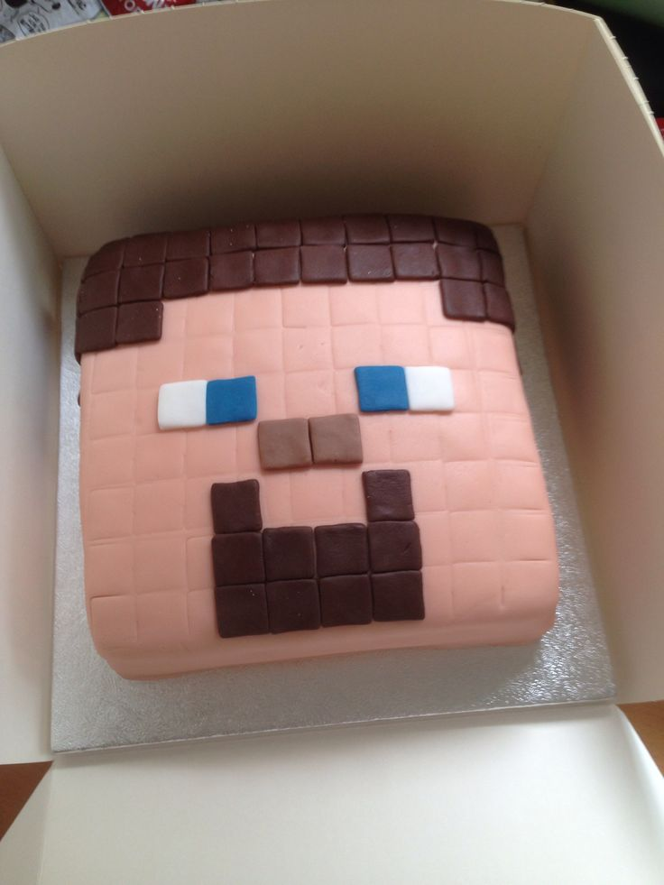 Minecraft Steve Head Cake Birthday Cakes Pinterest