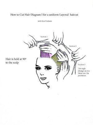 Diagram for a Uniform Layered Hair Cut | uniform layer