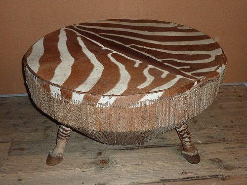 zebra skin drum table authentic taxidermy  Taxidermy