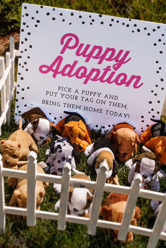 From Oriental Trading – says it's for a b-day party, but I think the girls would love to adopt a puppy at
