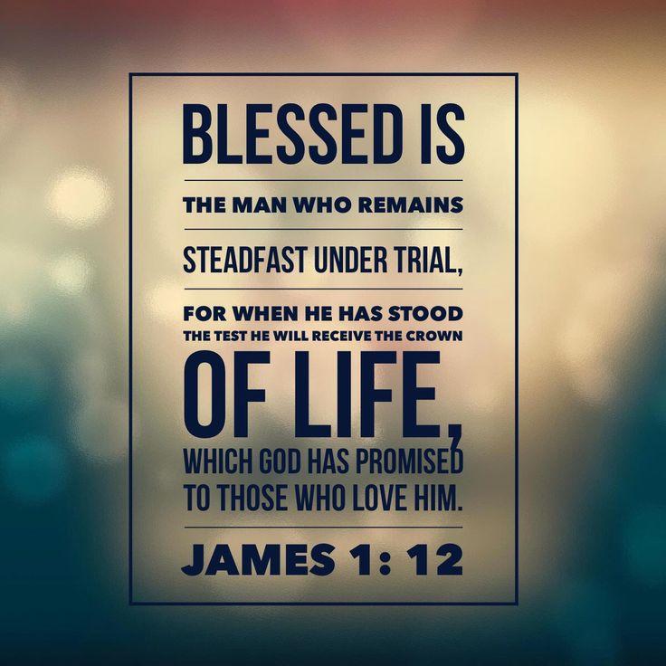 Blessed is…steadfast under trial… James 1:12 RachelWojo.com