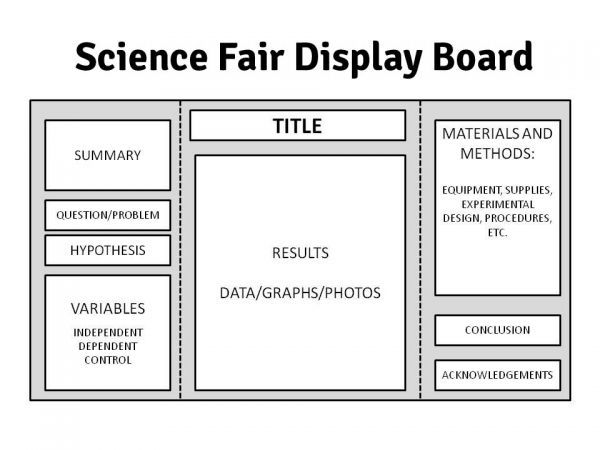 The Ins & Outs of Science Fairs: Preparing Your Display