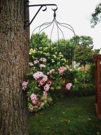 Best 25+ Birdcage planter ideas on Pinterest