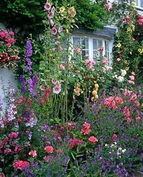 25 Best Ideas About Front Gardens On Pinterest Garden Design