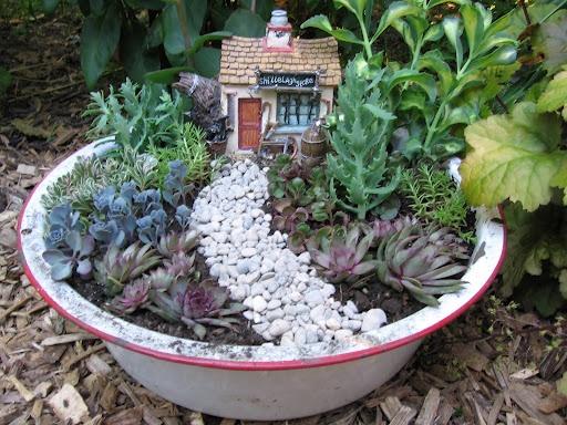 Les 95 Meilleures Images à Propos De Dish Garden Sur Pinterest